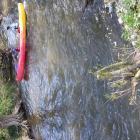 Journée Kayak 5ème