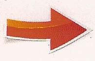 fleches-athenee5-1.jpg